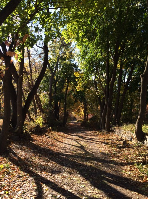 The path south of Van Cortlandt Park House Museum. (Photo by Jordan Moss)