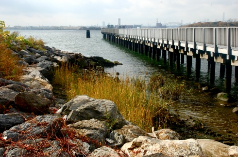 Just one gorgeous bit of Barretto Point Park today. Photo by Jordan Moss